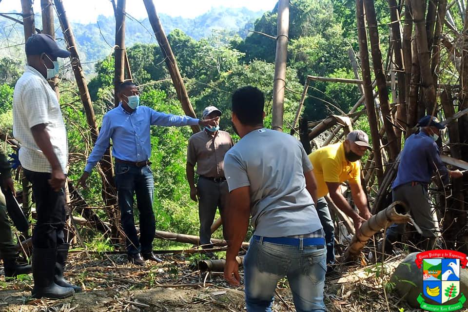 Alcalde dirige brigada de reforestación